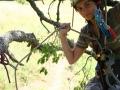 Kötéltechnika gyakorlás a fán
