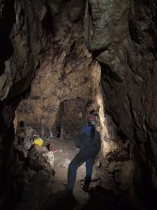 A barlang legtágasabb szakasza, a felső végponthoz közel