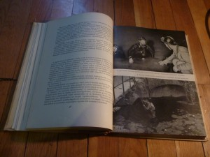 A Malom-tó a könyvben
