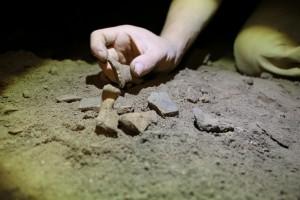 Különösebb keresés nélkül is előkerülnek csontok és cserepek